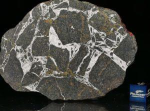 NWA 13679 (23.88 gram)