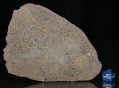 NWA 6231 (29.88 gram)