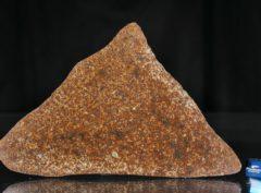 NWA 13647 (90.50 gram)