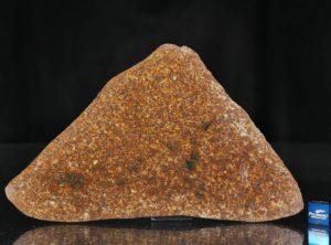 NWA 13647 (83.40 gram)