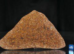 NWA 13647 (93.60 gram)