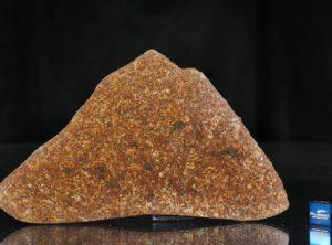 NWA 13647 (83.90 gram)