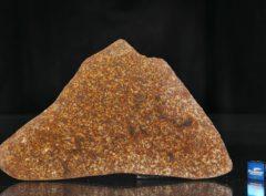 NWA 13647 (79.20 gram)