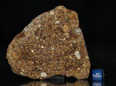NWA 7158 (27.00 gram)