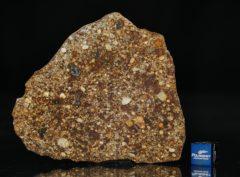 NWA 7158 (28.20 gram)