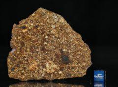 NWA 7158 (26.87 gram)