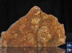 SAHARA 99477 (105 gram)