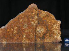 SAHARA 99477 (109 gram)