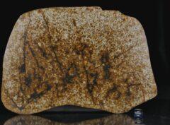 NWA 13648 (494 gram)