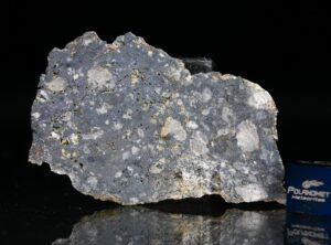 NWA 13278 (8.61 gram)