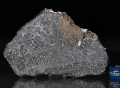 MC 184 (40.40 gram)