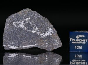 NWA 13679 (3.79 gram)