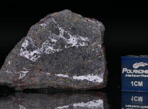 NWA 13679 (5.51 gram)