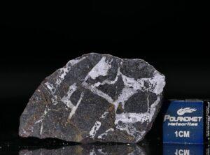 NWA 13679 (7.83 gram)