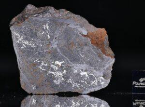 NWA 13679 (31.97 gram)