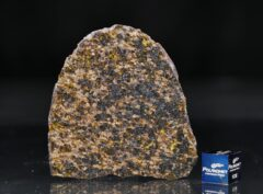 NWA 11640 (20.16 gram)