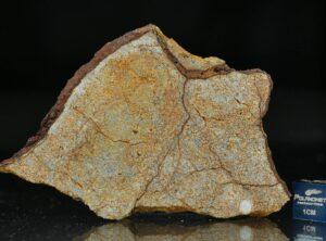 AL HAGGOUNIA 001 (33.5 gram)