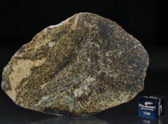 NWA 6232 (22.50 gram)