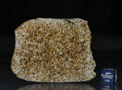 NWA 6255 (28.20 gram)