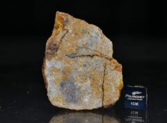 AL HAGGOUNIA 001 (55.6 gram)