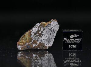 NWA 11168 (6.42 gram)