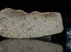 NWA 5496 (12.09 gram)