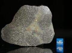 TASSÉDET 004 (22.63 gram)