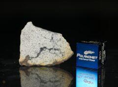 NWA 13446 (1.62 gram)