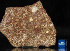 NWA 7814 (19.70 gram)