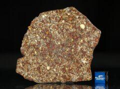 NWA 7814 (29.12 gram)
