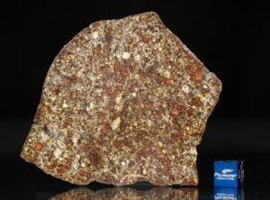NWA 7814 (31.27 gram)