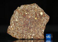 NWA 7814 (29.22 gram)