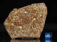 NWA 7814 (19.76 gram)