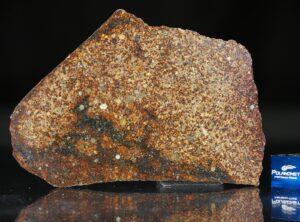 NWA 4555 (33.15 gram)