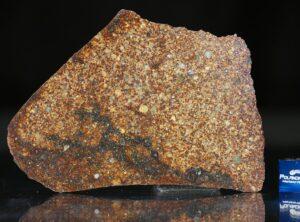 NWA 4555 (34.89 gram)