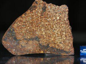 NWA 4555 (35.48 gram)