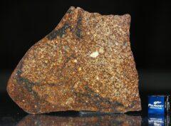 NWA 4555 (34.67 gram)