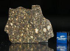 NWA 5507 (8.81 gram)
