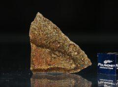 NWA 5505 (3.84 gram)