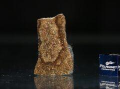 NWA 5505 (2.89 gram)