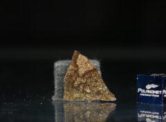 NWA 5505 (1.57 gram)