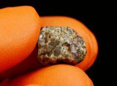 Erg Chech 002 (1.95 gram)