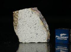 NWA 13446 (3.35 gram)