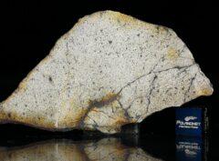 NWA 13446 (9.94 gram)