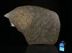 NWA 13767 (95 gram)