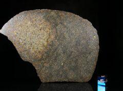 NWA 13767 (107 gram)
