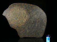 NWA 13767 (144 gram)