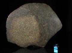 NWA 13767 (180 gram)