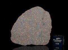 Jiddat al Harasis 1103 (4.60 gram)