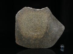 NWA 13767 (222 gram)